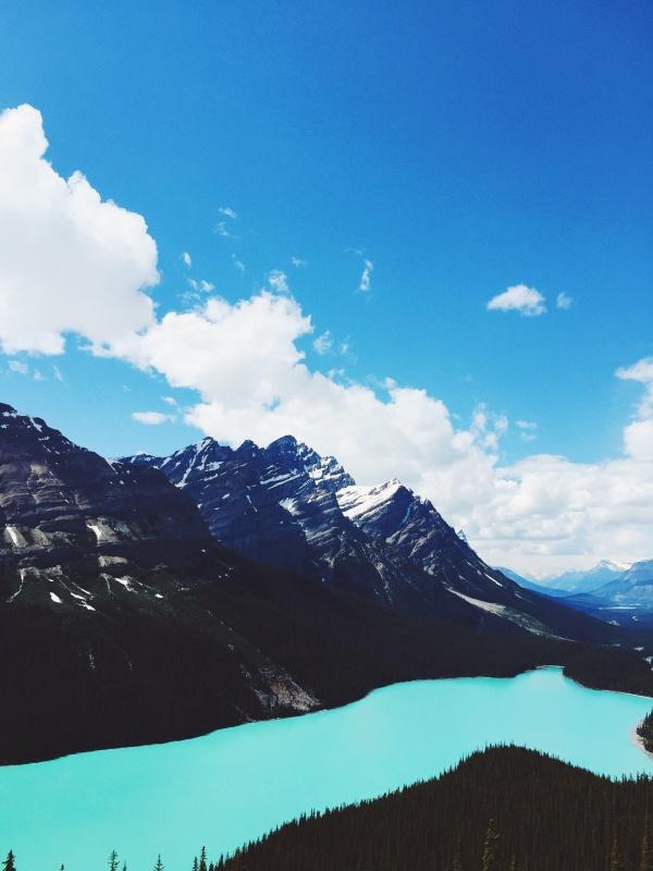 Peyto Lake inside of Jasper National Park in Alberta, Canada. | daemaine