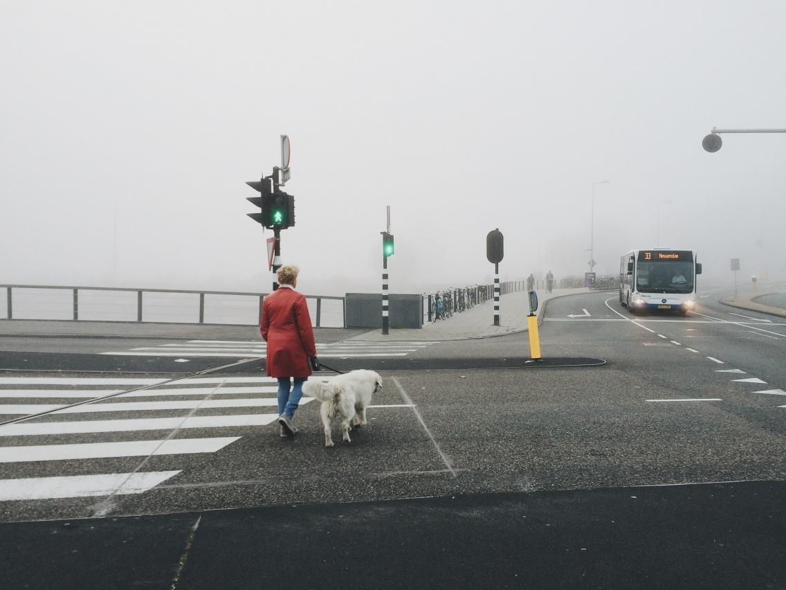 fog #2. #amsterdam | kay