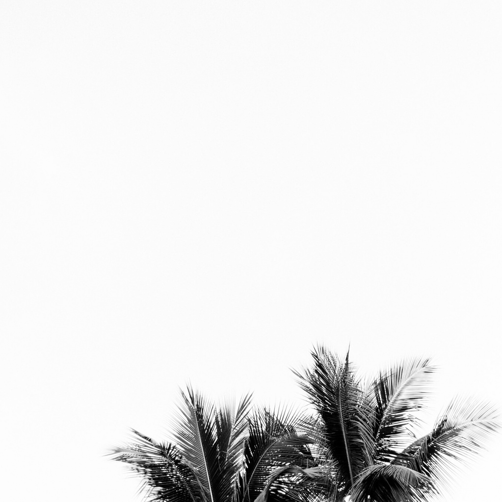 VSCO - Missing summer vibes from new years trip  #summer #brazil