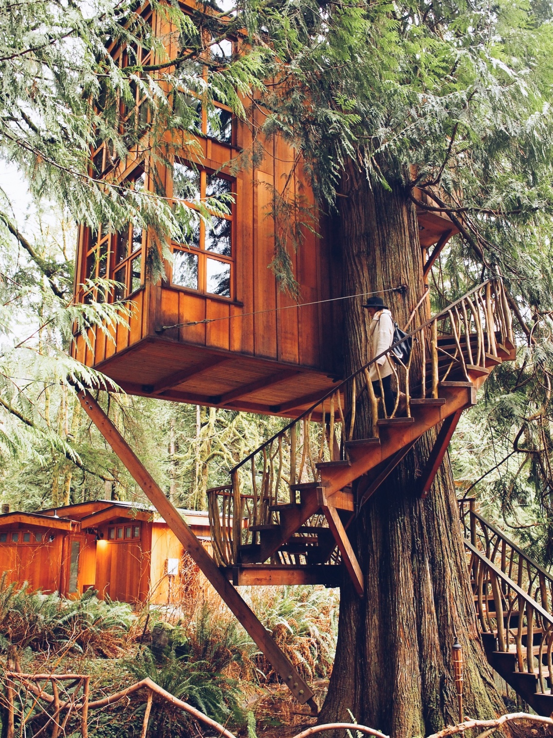 Treehouse Point Issaquah Kendradalley Vsco