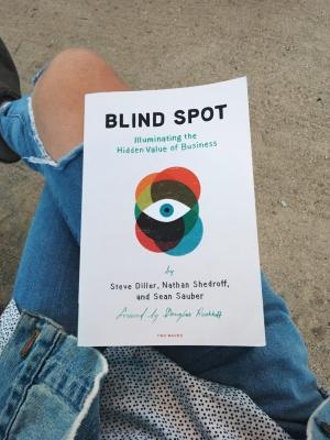 blind spot illuminating the hidden value in business