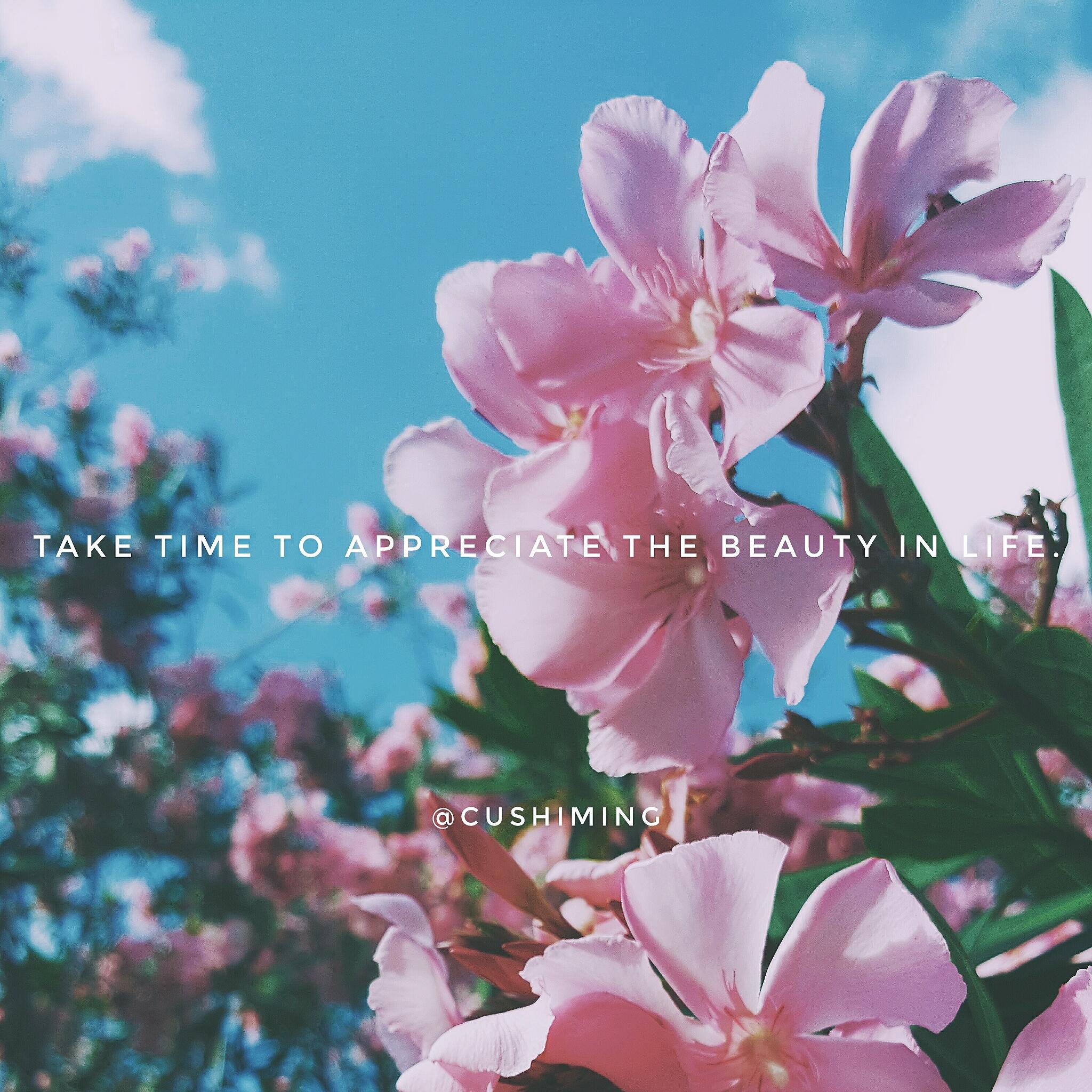 Fashion Style Nature Outdoors Vsco Photography Vscocam Photooftheday Styleonvsco Sky Flowers Trees Quote Quotes Inspiration Cushiming Vsco